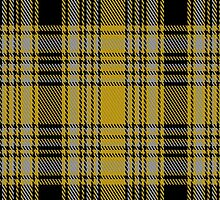 01094 Corps Suevia Heidelburg Tartan Fabric Print Iphone Case by Detnecs2013
