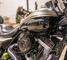 1997 Harley Flathead FLHT by Bill Spengler