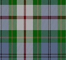 01098 Coulter Dress Clan/Family Tartan Fabric Print Iphone Case by Detnecs2013