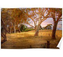 Dawsley II, Adelaide Hills SA Poster