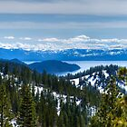 View of Tahoe from the Incline Flume Trail by Dianne Phelps