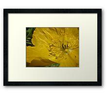 "Yellow ""Pop""-pee Framed Print"