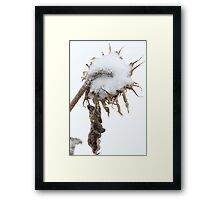 Backwards Crown Framed Print