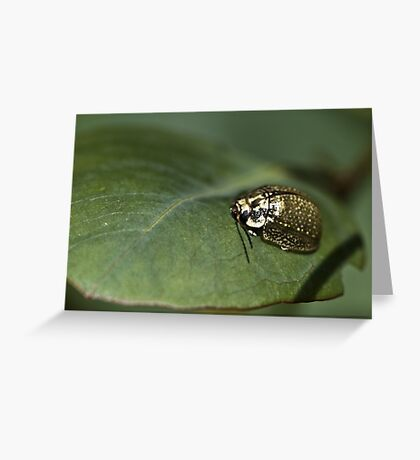 Gold Lady Greeting Card