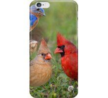 Woodland Friends iPhone Case/Skin