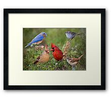 Woodland Friends Framed Print