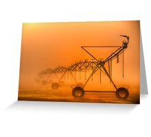 Dinosaurs in the Mist - Walwa Victoria (Colour) - The HDR Experience Greeting Card