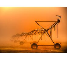 Dinosaurs in the Mist - Walwa Victoria (Colour) - The HDR Experience Photographic Print