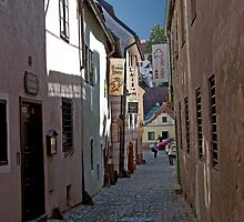 Cobble Stone Street by phil decocco