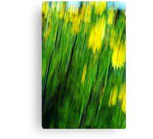 Abstract Fleur Canvas Print