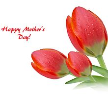 Happy Mother's Day Greeting Card by Mariola Szeliga