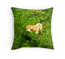 Peeking Panda Throw Pillow