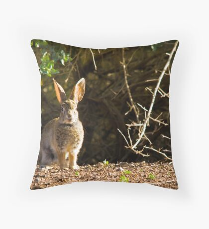 At Sunrise Throw Pillow