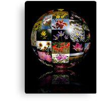 Flower Ball Canvas Print