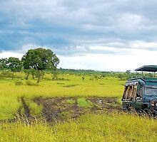 Safari - Masai Mara - Kenya by Charuhas  Images