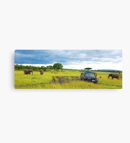 Safari - Masai Mara - Kenya Canvas Print