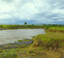 River Mara in Kenya by Charuhas  Images