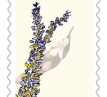Stamp series: Wattle by drunkonwater