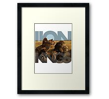 Lion Kings Framed Print