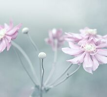 Pastel Memories by Cathy Middleton