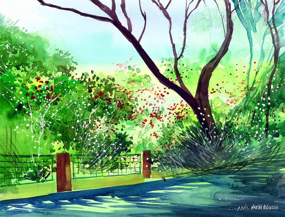 Peace of mind 1 by Anil Nene