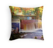 El Paraiso Wonderland Throw Pillow