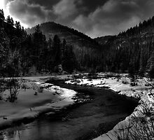 Black Hills Stream by wanblake