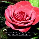 God's Word Will Last Forever by MaeBelle