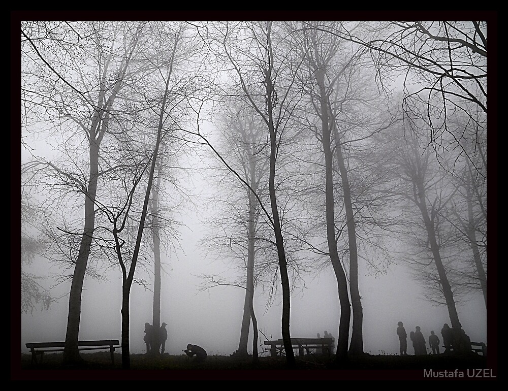 people foggy day by Mustafa UZEL