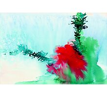 Red and Green Abstract 1 Photographic Print