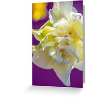 iPhone Case Drowsy Daffodil Greeting Card