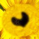 Bat Ya It's A Sun Flower by ArtOfE