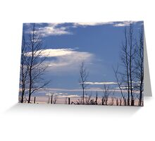Winter Fenceline Greeting Card