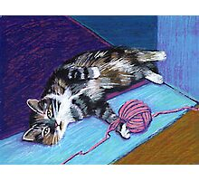 Cat and Yarn Photographic Print