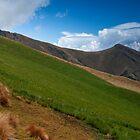 Cruz Loma Above Quito, Ecuador by Paul Wolf