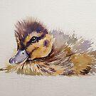Little duck sketch by Karl Fletcher