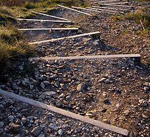 Steps by Lugburtz
