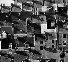 Houses at Chesil Beach, Dorset by Lugburtz