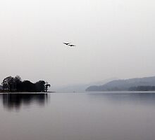 2 Geese over Coniston by mikebov