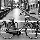 The Hague - A Bicycle & The Canal by rsangsterkelly