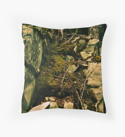 Rock, Moss and Root Throw Pillow