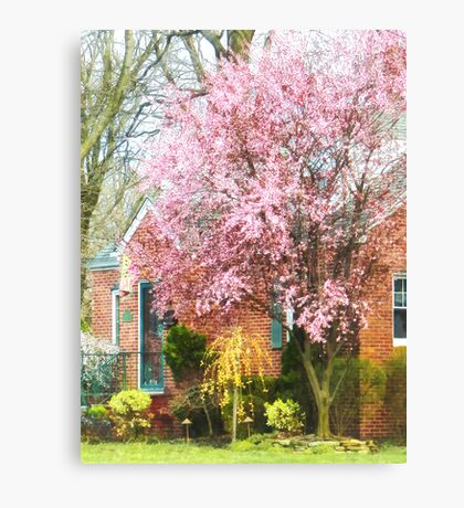 Cherry Tree by Brick House Canvas Print