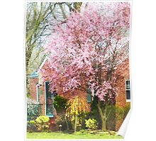 Cherry Tree by Brick House Poster