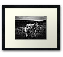 Ready for the British Spring Framed Print