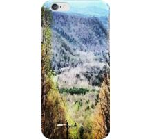 The Mountain's Valley View iPhone Case/Skin
