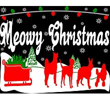 Meowy Christmas Cat Sleigh Photographic Print