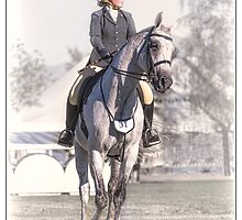 Dressage by Phoxford