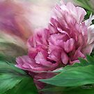 Peony - 50 Shades Of Pink by Carol  Cavalaris