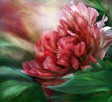 Peony - 50 Shades Of Red by Carol  Cavalaris