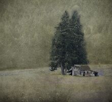 Cabin Under the Tree by Wendi Donaldson Laird